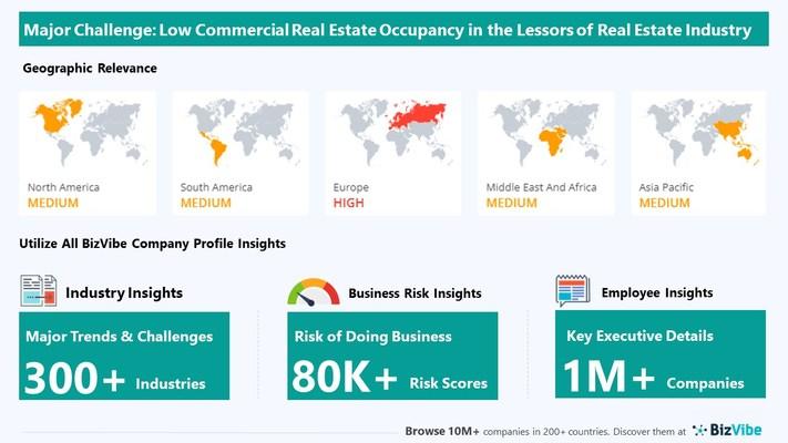 Snapshot of key challenge impacting BizVibe's lessors of real estate industry group.