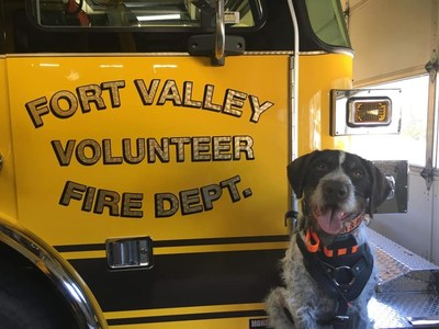 Merle Haggard, of the Fort Valley Fire Department in Virginia, is a runner-up in Kidde's Fire Service Dog of the Year contest.